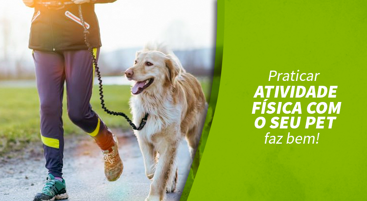 Praticar atividade física com o seu pet faz bem
